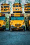 Vue peu commune d'autobus scolaires jaunes Photo libre de droits