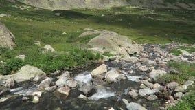 Vue pittoresque d?bordante de courant de montagne Montagnes d'Altai, Russie banque de vidéos