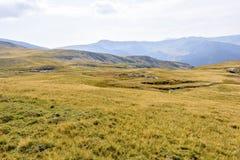 Vue pittoresque de lumière du jour aux montagnes rocheuses Photographie stock libre de droits
