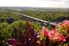 Vue pittoresque de paysage urbain avec le pont et la forêt dans l'horizon par de belles fleurs rouges ci-dessus du point de visio Photo stock