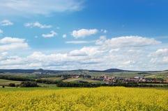 Vue pittoresque de secteur accidenté de campagne avec le gisement de graine de colza Photographie stock