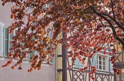 Vue pittoresque de ville pendant la pluie d'été Colmar, France Photographie stock