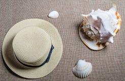 Vue plate de vacances avec des coquilles de shellssea de chapeau de paille et de mer photographie stock libre de droits