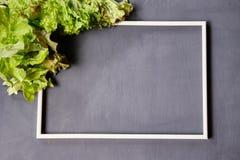 Vue pour l'espace de copie avec de la laitue sur un fond gris photo stock