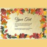 Vue pour le texte avec des feuilles d'automne sous la pluie Image stock