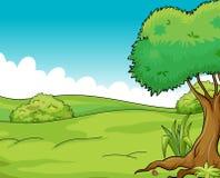 Vue propre et verte illustration de vecteur