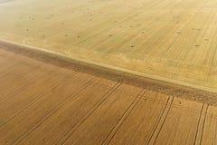 Vue régionale de champ de maïs Images libres de droits