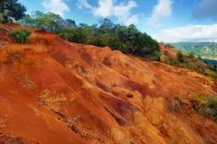 Vue renversante dans le canyon de Waimea Photos libres de droits
