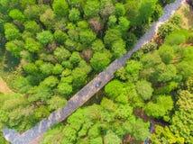 Vue a?rienne au-dessus de parc de lac moon au printemps, Wuhan, Hubei, Chine images stock