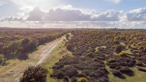 Vue a?rienne de nouveau Forest National Park avec la lande sous un ciel bleu majestueux et des nuages blancs image stock