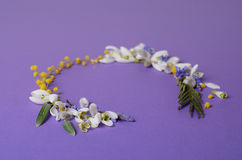 Vue ronde des perce-neige, de la mimosa et des saules de fleurs Composition florale sur le fond violet Image stock
