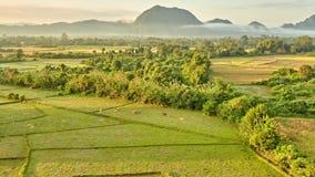Vue rurale aérienne de lever de soleil de vallée de montagne clips vidéos