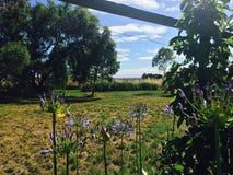 Vue rurale australienne Image libre de droits