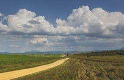 Vue rurale avec la route de campagne Photos stock