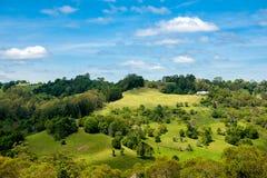 Vue rurale des bétail et de l'agriculture d'Australie sur la colline Photos stock