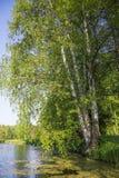 vue rurale paisible Photographie stock