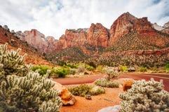 Vue scénique chez Zion National Park Photographie stock