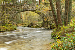 Vue scénique d'une rivière dans la forêt en parc naturel de Boca del Asno un jour pluvieux à Ségovie, Espagne Photo stock