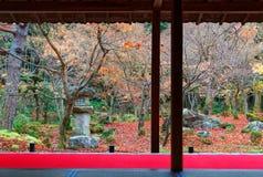 Vue scénique d'une salle de tatami par un jardin japonais de cour avec les arbres d'érable colorés et les feuilles tombées image stock