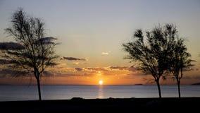 Vue scénique de beau coucher du soleil avec des silhouettes d'arbre Photographie stock
