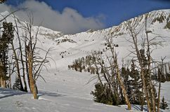 Vue scénique de cuvette Ski Area Images stock