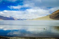 Vue scénique de lac et de montagne contre le ciel Photographie stock