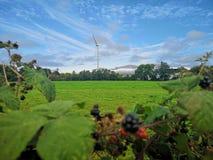 Vue scénique de moulin à vent contre le ciel photo libre de droits