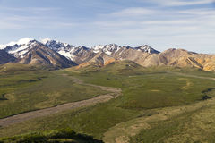 Vue scénique de parc national de Denali Photo stock