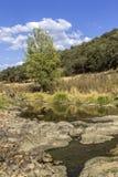 Vue scénique de paysage de campagne d'un courant d'eau douce Image libre de droits