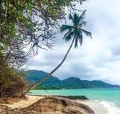 Vue scénique de plage, île de Mahe, Seychelles image libre de droits