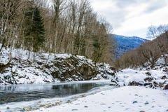 Vue scénique de rivière de montagne d'hiver Images libres de droits