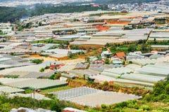 Vue scénique des serres chaudes aux fermes organiques Images stock