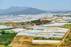 Vue scénique des serres chaudes Horizontal agricole Image libre de droits