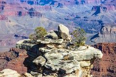 Vue scénique du sud de Rim Arizona Etats-Unis de parc national de Grand Canyon image stock