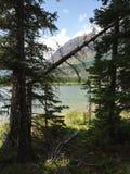 Vue scénique en parc national de glacier Photo libre de droits