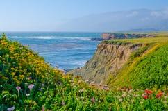 Vue scénique sur l'itinéraire 1 d'état de la Californie Images libres de droits