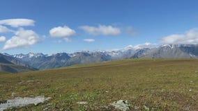 Vue sc?nique d'ar?tes et de pr?s de montagne Montagnes d'Altai, Russie banque de vidéos