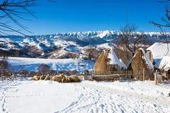 Vue scénique d'hiver typique avec des meules de foin et des moutons Photo libre de droits