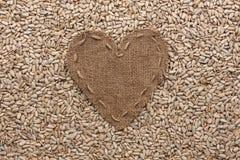 Vue sous forme de coeur fait de toile de jute avec des graines de tournesol Photographie stock libre de droits
