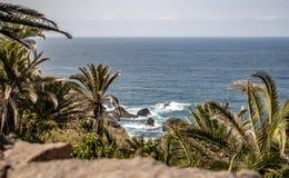 Vue spectaculaire au-dessus des palmiers vers l'Océan atlantique photo stock