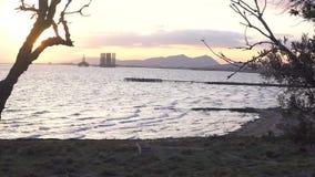Vue stupéfiante de mer avec la silhouette d'arbres faisant la frontière de cadre Bord de la mer avec la tour de montagne et de pé banque de vidéos