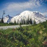 Vue stylisée de bord de la route des Wildflowers naturels avec Mt Rainier Background photos libres de droits