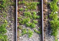 Vue supérieure aérienne des rails rouillés croisant le champ vert dans un jour d'été Vue aérienne de voie de chemin de fer par la photos libres de droits