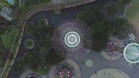 Vue supérieure aérienne pour le verger de Supertree dans les jardins par Marina Bay Sands à Singapour projectile Illuminé, beau,  images stock