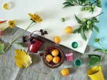 Vue supérieure, automne, installation d'été sur une toile blanche des matériaux d'art, fleurs fraîches et fruits, fond clair photographie stock libre de droits