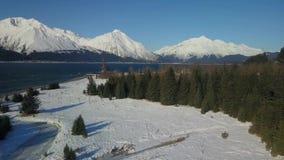 Vue supérieure d'arbre de l'Alaska clips vidéos