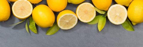 Vue supérieure d'ardoise de copyspace de bannière de fruits de citrons de citron Photographie stock libre de droits