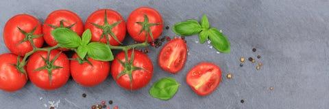 Vue supérieure d'ardoise végétale rouge de bannière de tomate de tomates Photographie stock