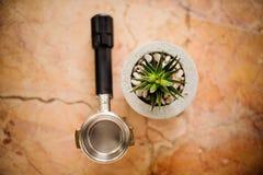 Vue supérieure d'humeur de barman et de plante verte dans le pot concret Photo stock