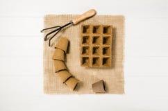 Vue supérieure d'outils de jardinage sur le fond en bois blanc de planches Image libre de droits